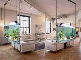 inspiring aquarium office designs that will catch your eye aquarium office