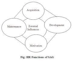 Phd thesis on human resource development   Generally Essays   www
