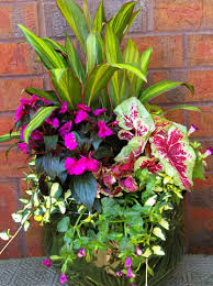 Shade <b>Colorful</b> Container Garden - <b>DIY</b> Gardening Inspiration