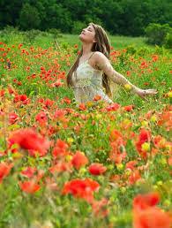 Resultado de imagen para flores de campos