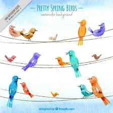 Hand <b>painted</b> pretty <b>spring birds</b> design | Free Vector