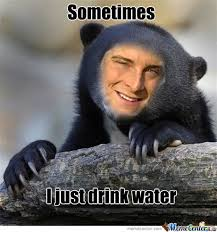 Bear Memes. Best Collection of Funny Bear Pictures via Relatably.com
