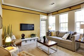 room bright yellow accent wall