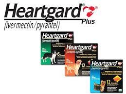 Image result for Heartgard
