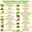 List of Herbs and Their Uses - LoveToKnow