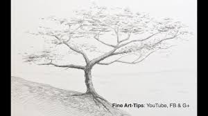 How to <b>Draw</b> a Tree With <b>Pencil</b> - YouTube