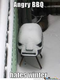 Hates Winter Memes. Best Collection of Funny Hates Winter Pictures via Relatably.com