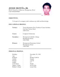 example ng resumes template example ng resumes