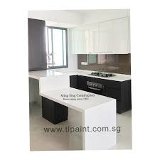 white kitchen windowed partition wall: kitchen walls painted white in black white theme