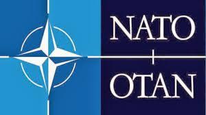Resultado de imagem para CRAZY NATO