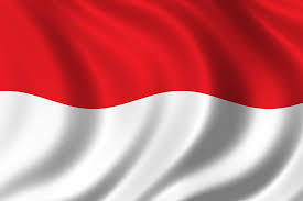 Image result for indonesia flag
