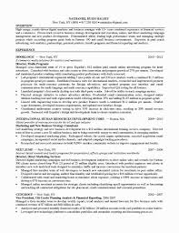 marketing digital marketing manager resume printable digital marketing manager resume photo