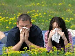Resultado de imaxes para porque hai mas alergicos en la ciudad que en el campo?