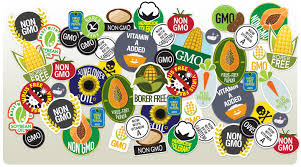 are gmos safe yes the case against them is full of fraud lies 150622 gmohero