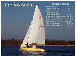 Image result for flying scot images