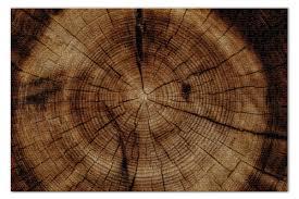 <b>Пазл 73.5</b>×<b>48.8 см</b> (1000 элементов) Дерево #3261211 от Puzzle ...