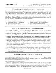 Director Level Resume  marketing director resume account       managing director resume