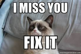 I miss you fix it - Grumpy cat II | Meme Generator via Relatably.com