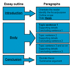 How to Write a   Paragraph Essay Outline    Need Paper Help   Paragraph Essay Outline