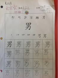 homework examples mandarin immersion parents council nan