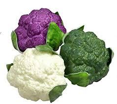 HZHI Three-Colour (White Green Purple) PU Artificial ... - Amazon.com