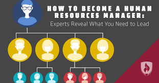 how to become a human resources manager experts reveal what you how to become a human resources manager experts reveal what you need to lead