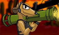 Image result for ninja meerkat