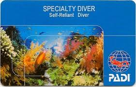 Image result for self reliant diver
