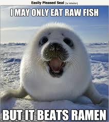 Ocean's Five: Arctic Memes | One World One Ocean via Relatably.com