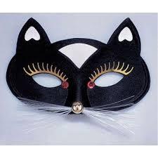 Výsledek obrázku pro kočka-maska