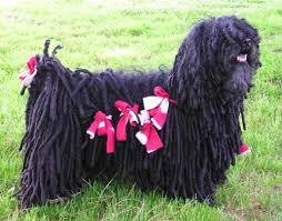 Τι είναι το Puli dog..