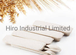 Wheat straw spoon and fork set - Hiro Industrial Limited - page 1.