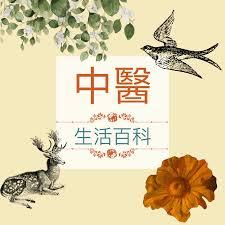 中醫生活百科