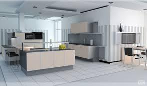 Kitchen Design Freeware On Line Kitchen Design Country Kitchen Designs