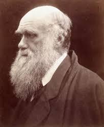 Charles Darwin: free web books, online