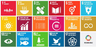 Resultado de imagen de objetivos de desarrollo del milenio 2015