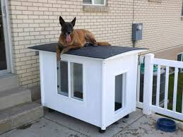 The Dog Mansion   or   Knock Down Dog HousePicture of The Dog Mansion   or   Knock Down Dog House