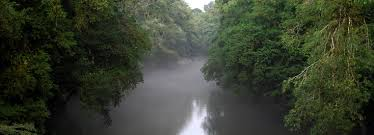 Image result for heart of darkness river image