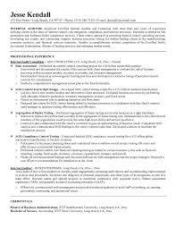 Internal Auditor Resume Sample   sales manager resume samples happytom co