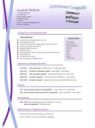 cv format word ou pdf best resume view cv format word ou pdf