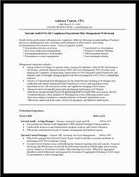 Audit manager resume     design com   Professional Resume Template Services