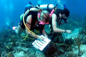good colleges in texas for marine biology sample abstract for essay topics on language and culture