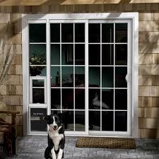 door pet built gallery