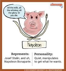 napoleon  a pig  in animal farmnapoleon  a pig