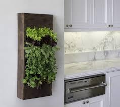 Kitchen Windowsill Herb Garden 15 Phenomenal Indoor Herb Gardens
