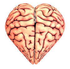 Image result for in love brain