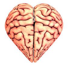 Image result for in love brain