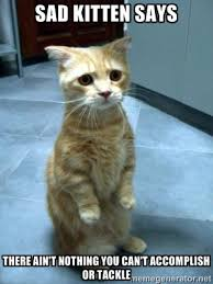 sad kitten says there ain't nothing you can't accomplish or tackle ... via Relatably.com