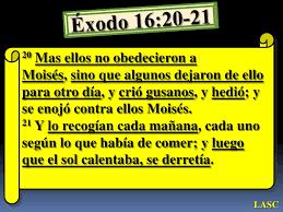 Resultado de imagen para exodo 16
