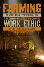 17 best images about information graphics facts farm work ethic erin ehnle
